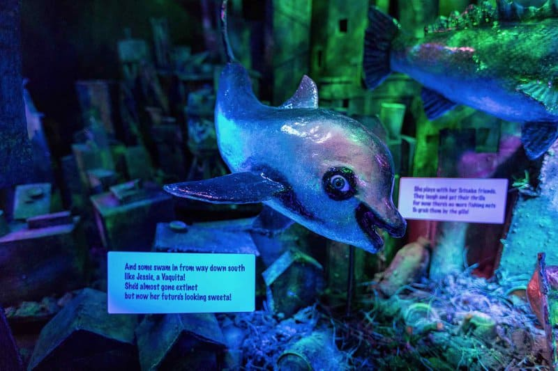 Bill Kieffer's City of Fish Pop-Up Art Installation at Long Beach Aquarium