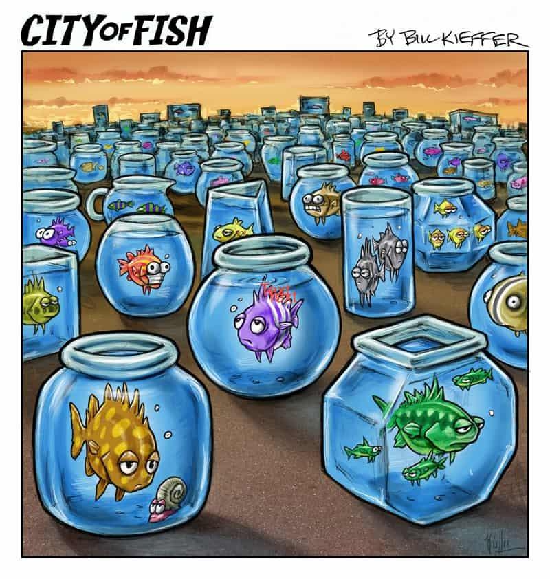 City of Fish Quarantoon #1