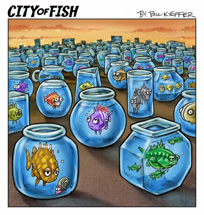 City of Fish Quarantoon #1