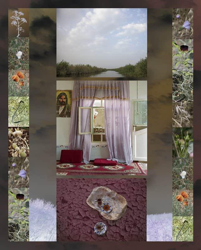 Meridel Rubenstein. Amethyst Room, Southern Iraq Marshes, 2011–2016